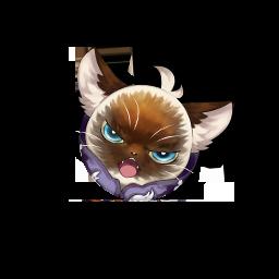 [キューピッド猫]ガット