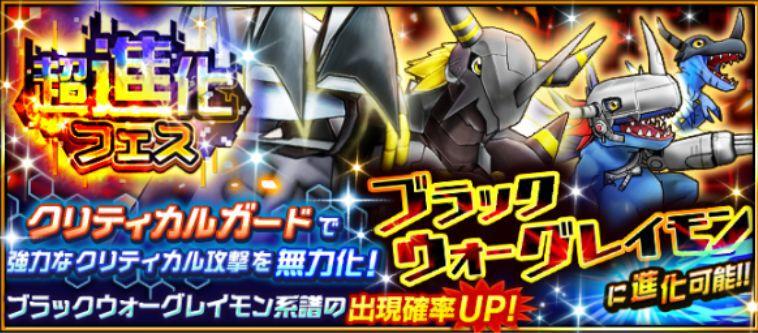 超進化フェス 漆黒の竜騎士
